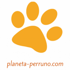 Productos para tu perro- Tu tienda online.