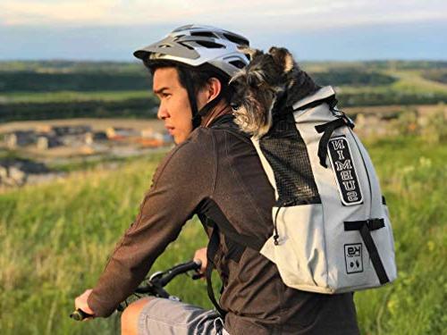 mochilas para perro